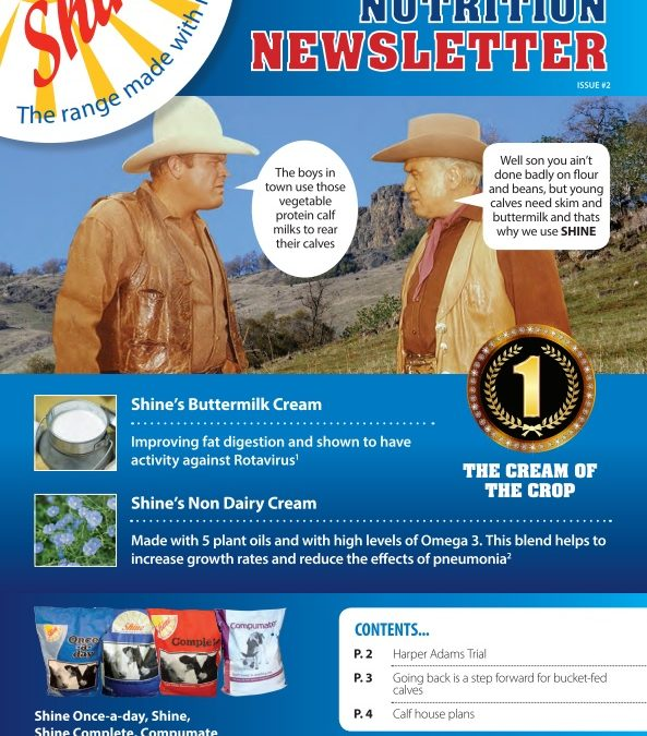 Shine newsletter – Issue 2