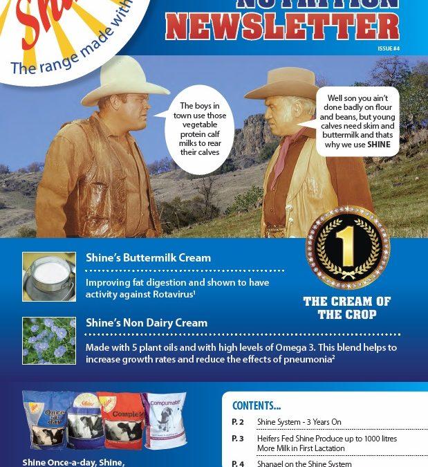 Shine newsletter – Issue 4